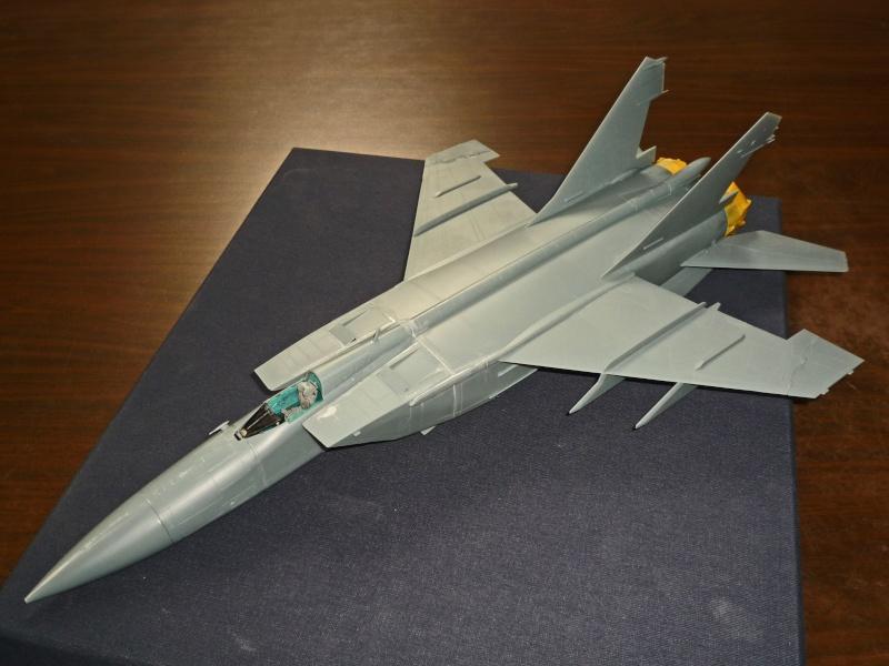"""MiG-25 PD/PDS """"Foxbat"""" (Kitty Hawk) - Page 2 P1090217"""