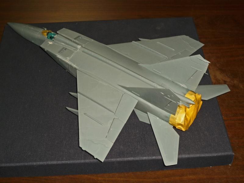 """MiG-25 PD/PDS """"Foxbat"""" (Kitty Hawk) - Page 2 P1090220"""