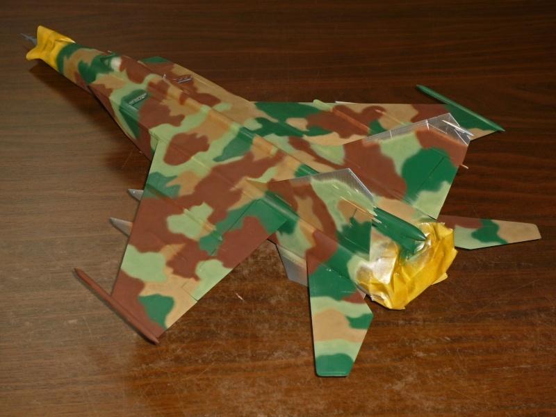 """MiG-25 PD/PDS """"Foxbat"""" (Kitty Hawk) - Page 2 P1090224"""