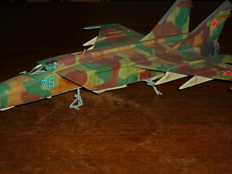 "MiG-25 PD/PDS ""Foxbat"" (Kitty Hawk) - Page 4 P1090312"