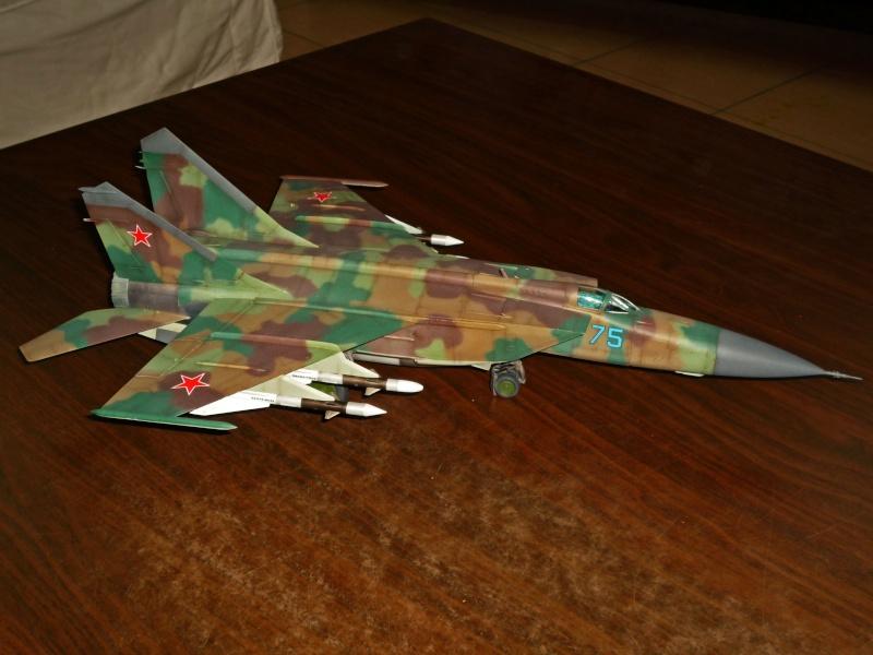 """MiG-25 PD/PDS """"Foxbat"""" (Kitty Hawk) - Page 5 P1090414"""