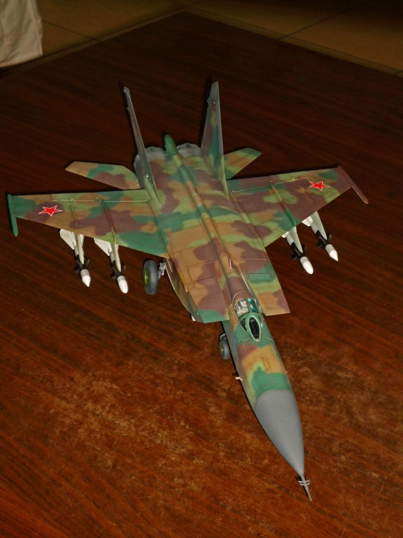 """MiG-25 PD/PDS """"Foxbat"""" (Kitty Hawk) - Page 5 P1090415"""