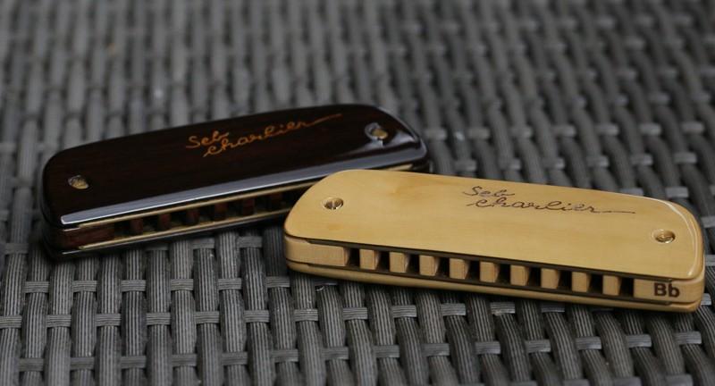 Photos harmonicas Brodur - Page 14 5d3_1311