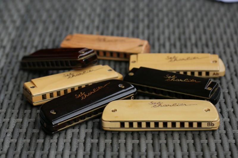 Photos harmonicas Brodur - Page 14 5d3_1312