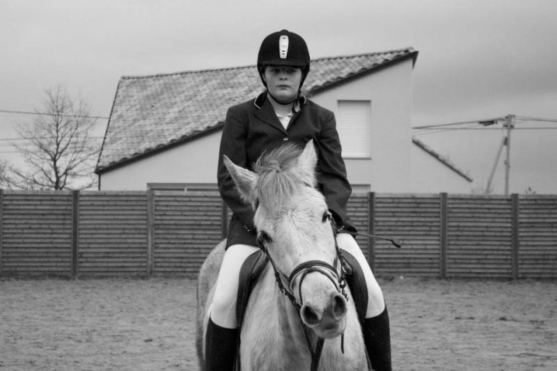 Sirocco, bébé poney ♥ ( Non, non, il a 8 ans x3 ) 10458210