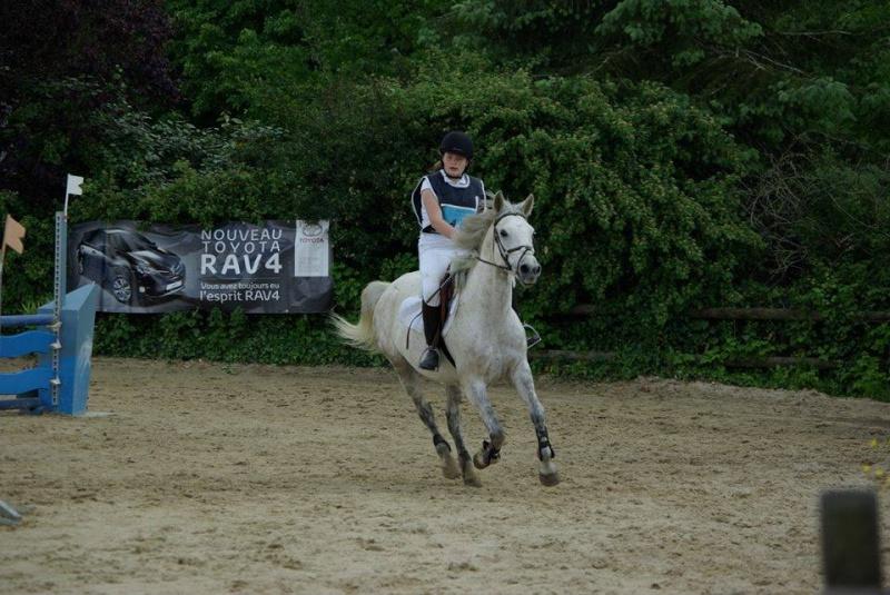 Sirocco, bébé poney ♥ ( Non, non, il a 8 ans x3 ) 10462810