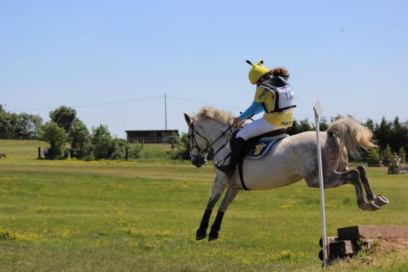 Sirocco, bébé poney ♥ ( Non, non, il a 8 ans x3 ) 10556210