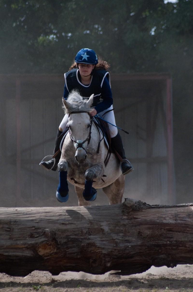 Sirocco, bébé poney ♥ ( Non, non, il a 8 ans x3 ) Dsc_0617