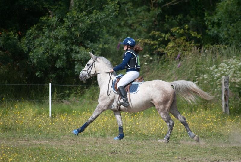 Sirocco, bébé poney ♥ ( Non, non, il a 8 ans x3 ) Dsc_0618