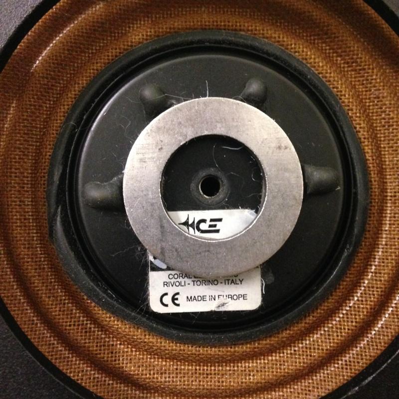 Coral Electronic Passive Radiotor Img_3513
