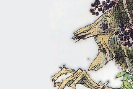 Bestiaire de la forêt de l'est Vielle10