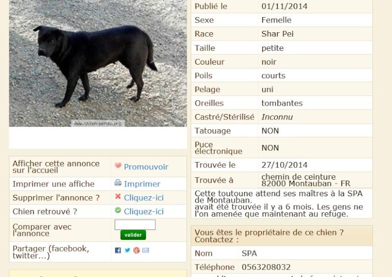 trouvée dans le 82/ Tarn et Garonne Trouvy10