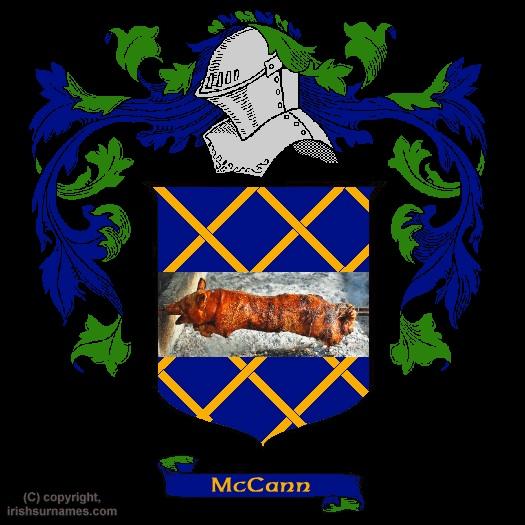 Only in America blog, worth reading Mccann15