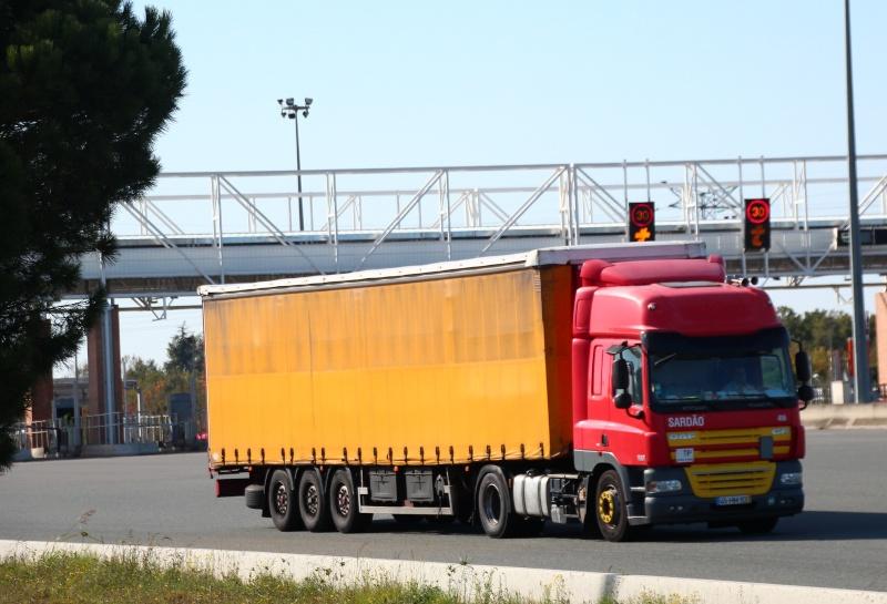 Sardao Transportes. Img_0523