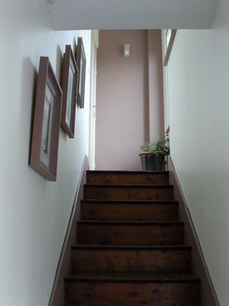 [Quelques réalisations] de Damien58 (plinthes escaliers, kaplas, volets atelier, meuble escalier, volets réno) Snb14011