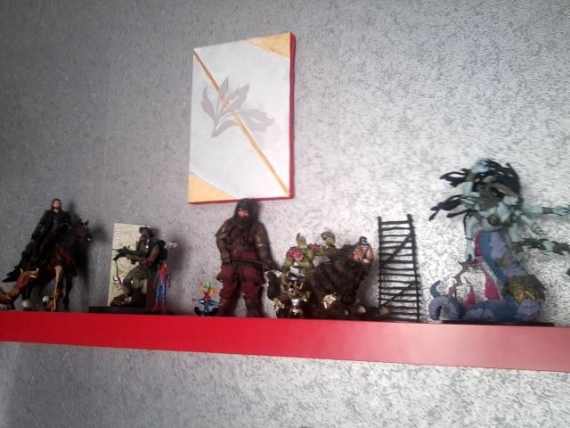 Les différentes  collections  de Quentin ( Sauron 44) .  Phot1029