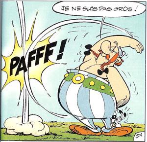 PRISM, le must ? - Page 2 Obelix10