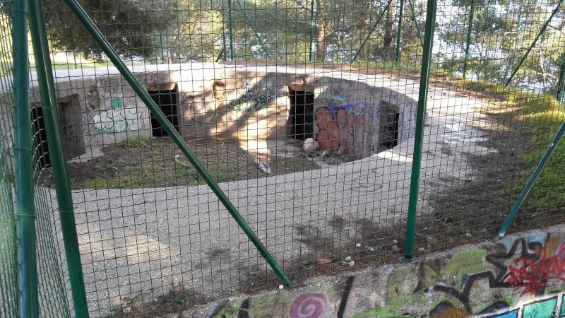 serie de bunker FABREGAS SIX FOURS 20140313
