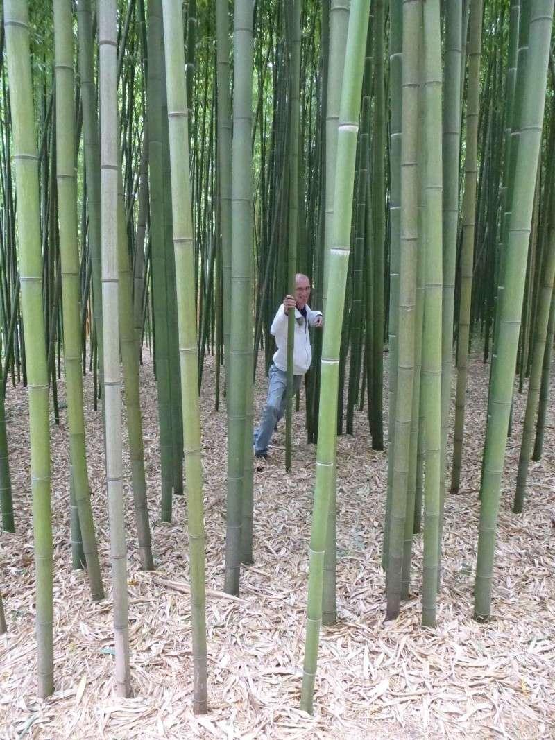 Les photos de vacances Bamoge10