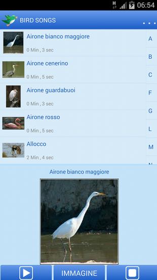 Canto degli uccelli sul tuo dispositivo Android! -  Bird Songs  111