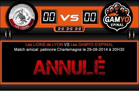 [Amical] Lyon - Epinal (29 août 2014) ANNULÉ Lyon-e11