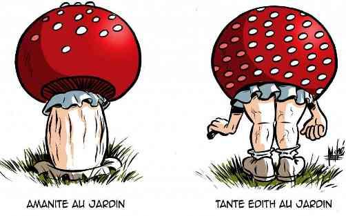Humour en image du Forum Passion-Harley  ... - Page 21 Downlo14