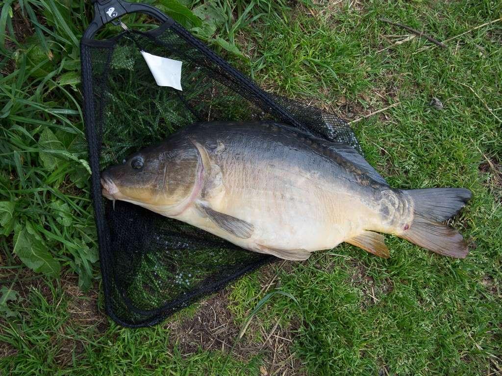 Pêche au blanc -g1x_311