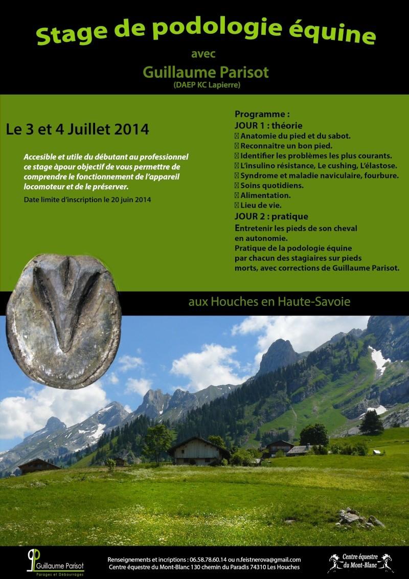 Stage Podologie équine 3 et 4 juillet aux Houches (74) avec G. Parisot Defini10