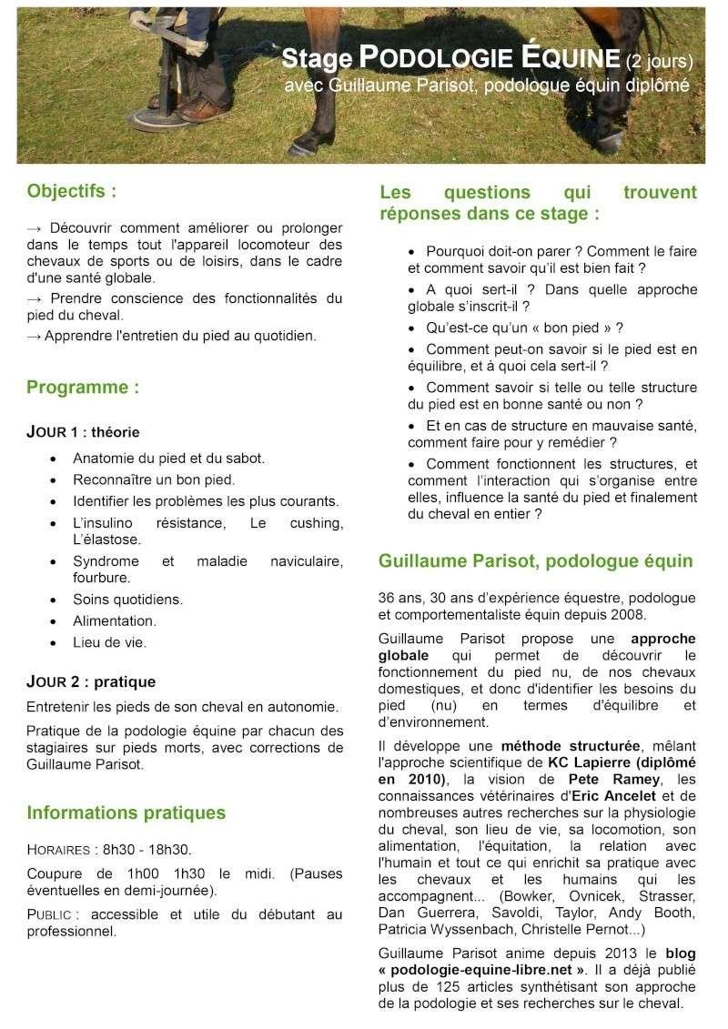 Stage Podologie équine 3 et 4 juillet aux Houches (74) avec G. Parisot Stage-10