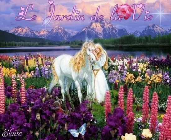 Le Jardin de la Vie Animes10
