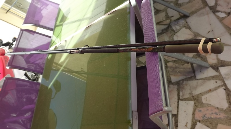 1 canne shimano tribal xtra Dscf1316
