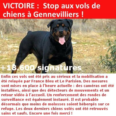 vols de chiens Victoi10