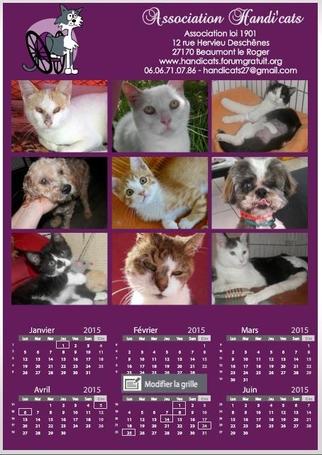 Calendriers Handi'cats 2015 Recto10