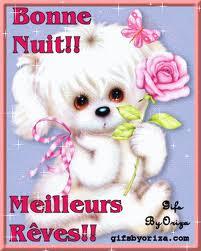 Bonne nuit les petits !! Nuit0511