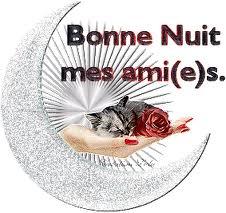 Bonne nuit les petits !! - Page 3 Nuit_212