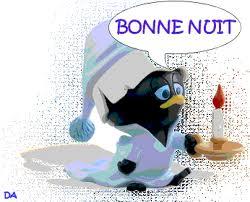 Bonne nuit les petits !! - Page 3 Nuit_910