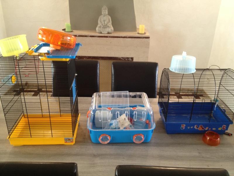 Petites cages d'appoint à vendre Photo211