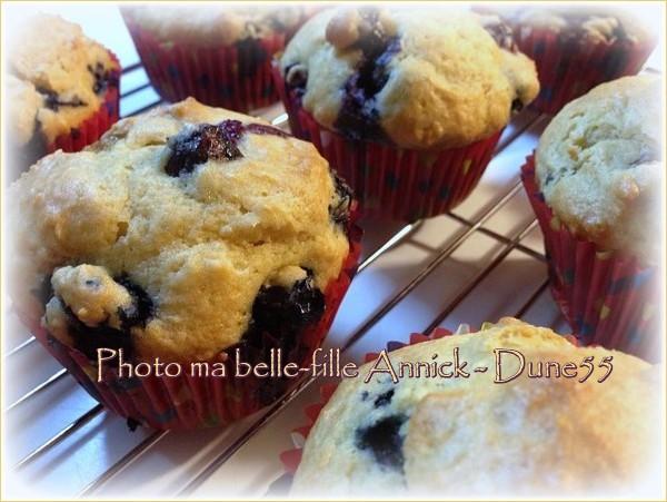 Muffins aux bleuets Qpoihk10