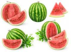 منافع في بذور البطيخ 24022110