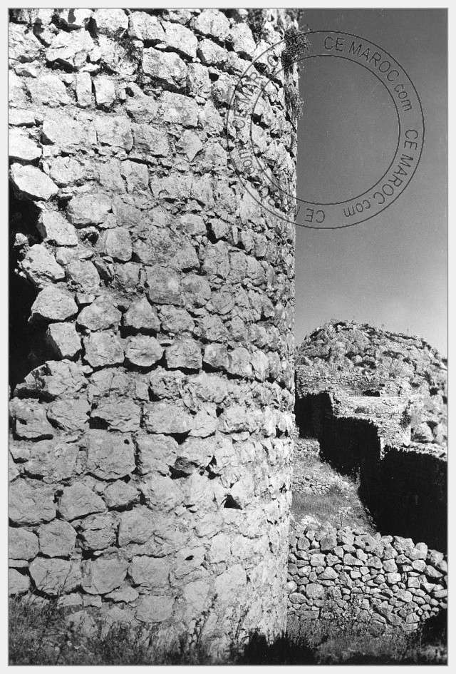 Moussem de Moulay Bouchta et l'Amergou. 06-23510