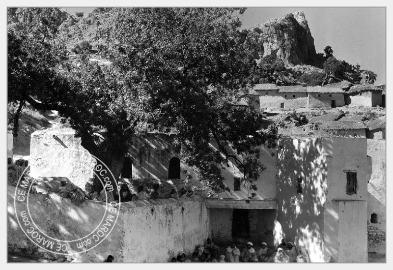 Moussem de Moulay Bouchta et l'Amergou. 11-22810