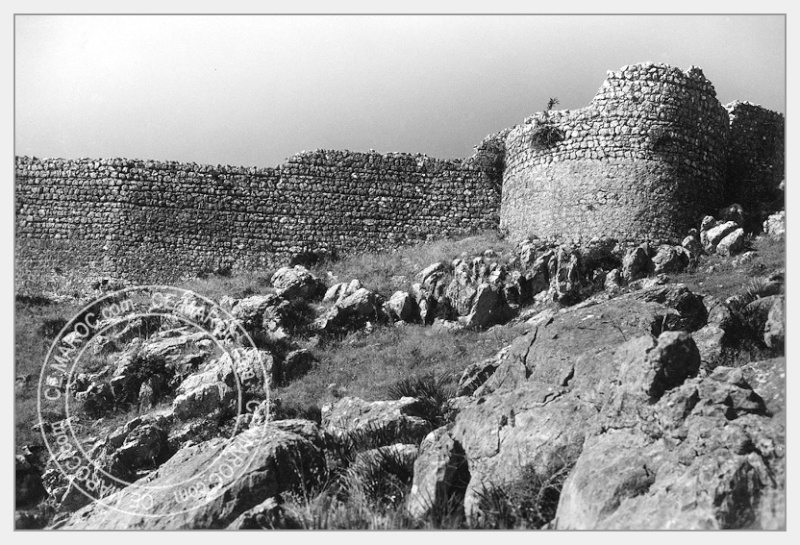 Moussem de Moulay Bouchta et l'Amergou. 23-24710