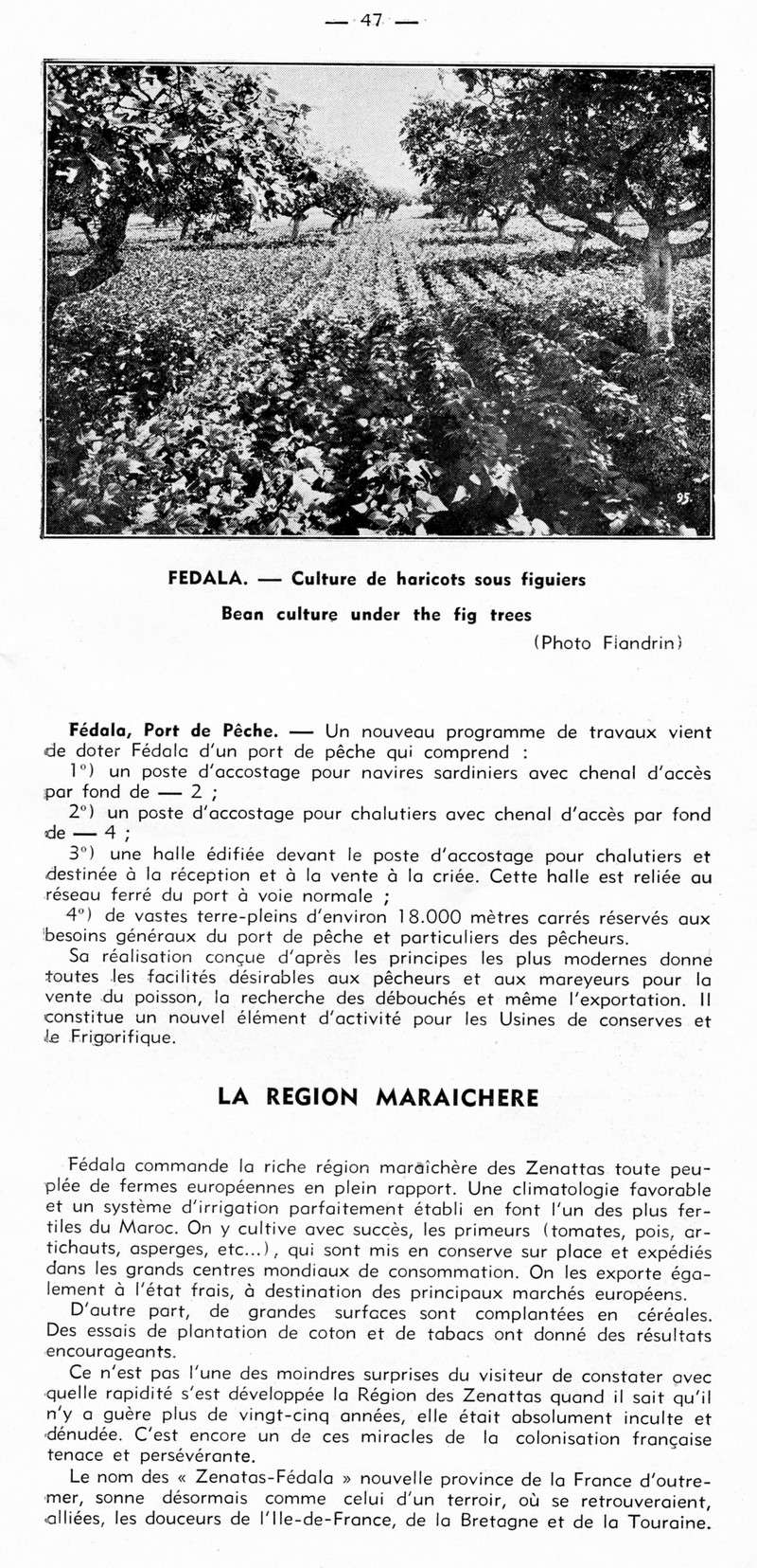 GUIDE GENERAL du MAROC - Page 2 23-gui10