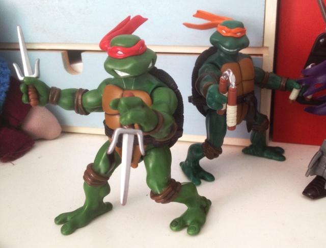 Teenage Mutant Ninja Turtles (TMNT) Turtle10