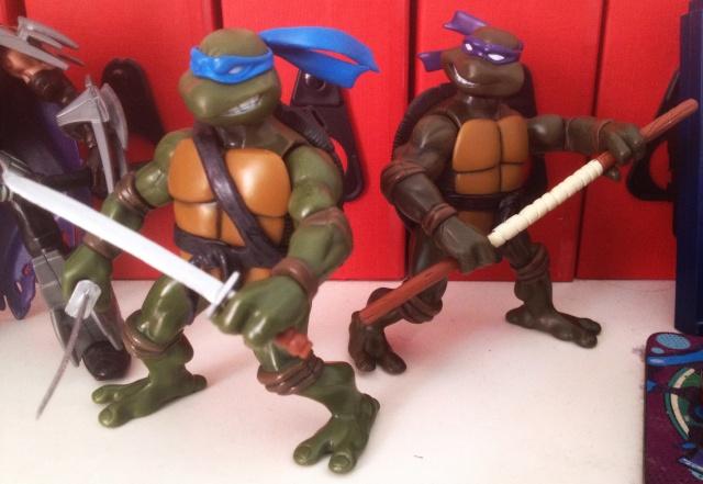 Teenage Mutant Ninja Turtles (TMNT) Turtle11