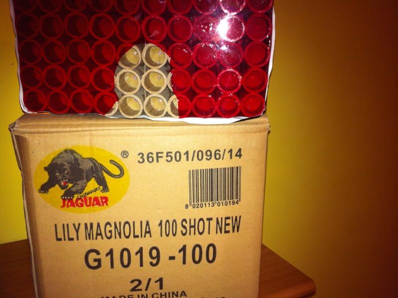 Art. G1019 Lily Magnolia 100 New (Jaguar) Magnol10