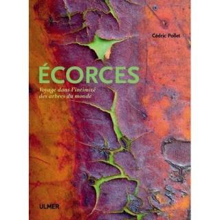 Arbutus x thuretiana Ecorce11