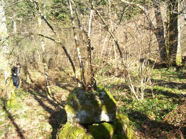 Le cimetière de Plainartige.  Cim00110