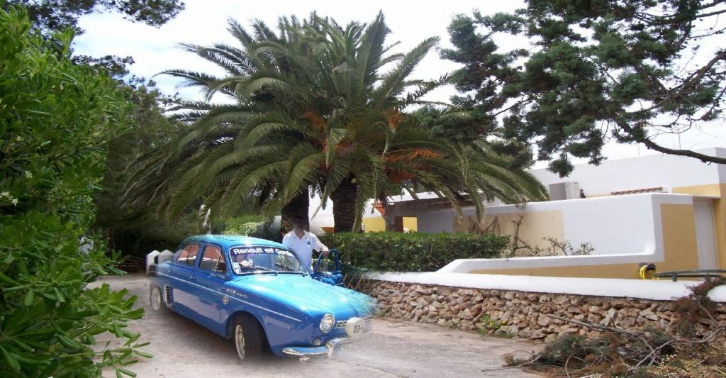 Hélicodauphine Maroc_10