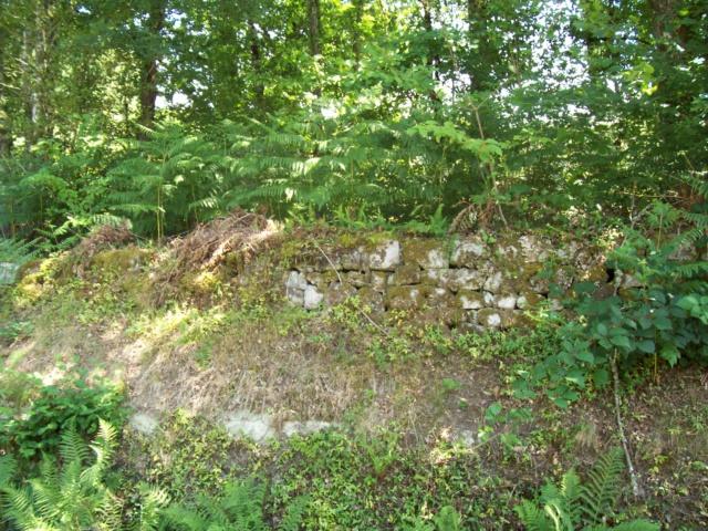 Le cimetière de Plainartige.  Mur_d_11